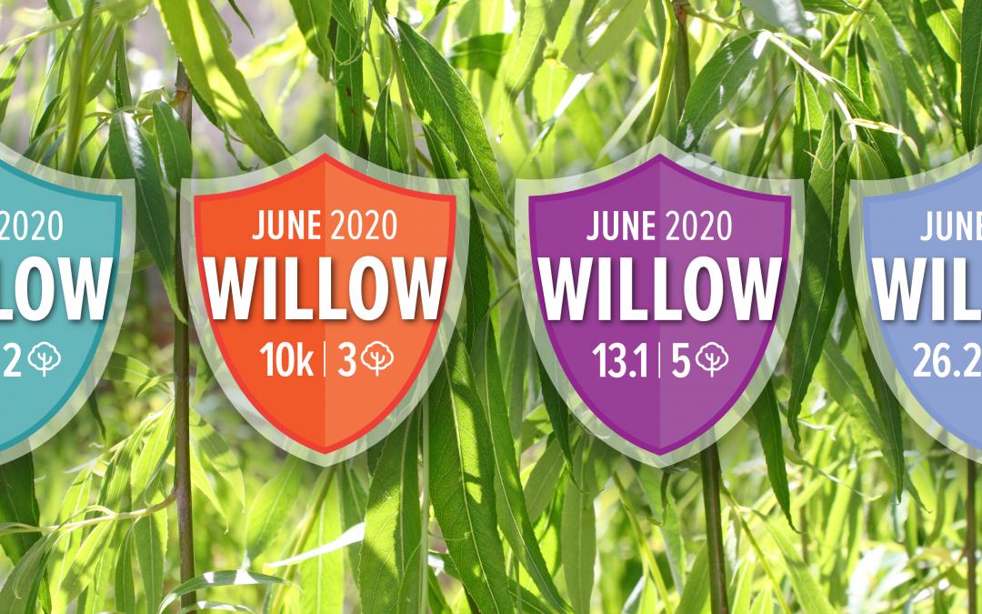 JUNE CHALLENGE RACES: The Willow